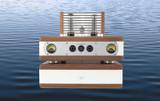 Sonic Surprises: Auris Nirvana Tube Amplifier Review