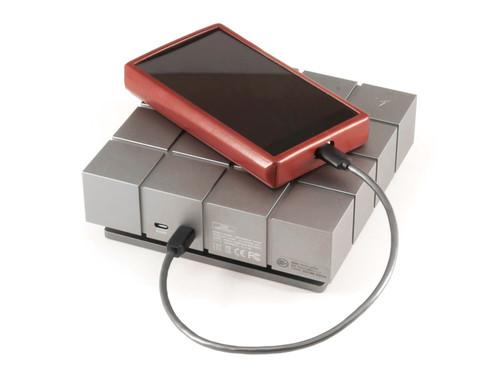 Silver Dragon USB C Cable