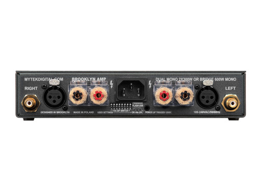 Back panel connections of the Brooklyn Amp+