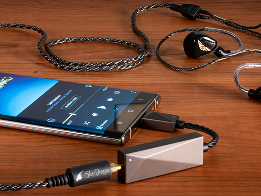 Astell&Kern USB-C Dual DAC Cable (PEE51) Review