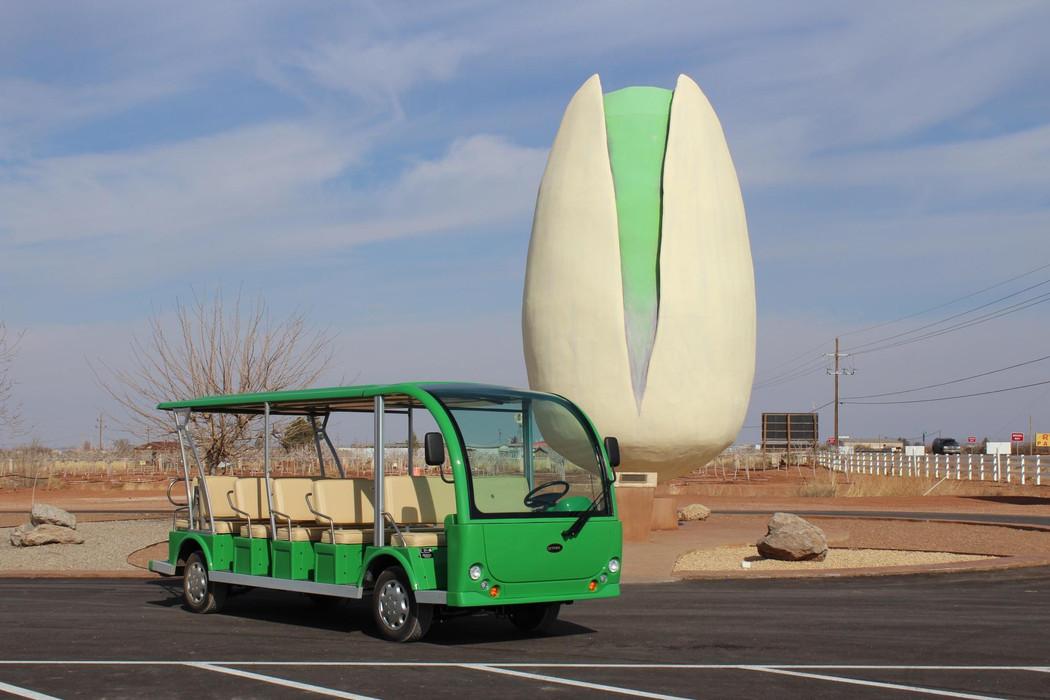 The World's Largest Pistachio