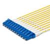 12 LC Simplex connectors, labelled, blue