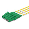 4 LC UPC to LC APC Multi-Fiber Indoor Micro Distribution Cable, OS2, 2.0mm leads, Plenum, TAA Compliant - Made in USA