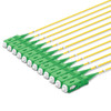 12 LC UPC to SC APC Pre-terminated (Spooled) Multi-Fiber Indoor/Outdoor Distribution Cable, OS2, 2.0mm leads, Plenum, TAA Compliant - Made in USA