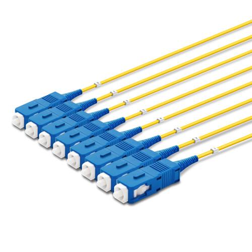 8 SC Simplex connectors, labelled, blue