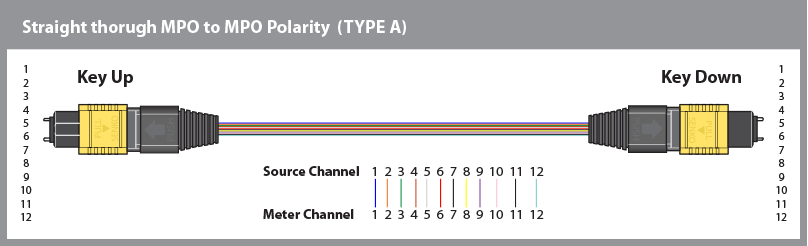 Polarity Type A