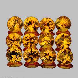 2.50 mm 12 pcs Round Brilliant Machine Cut Best AAA Fire AAA Golden Yellow Sapphire Natural {Flawless-VVS1}
