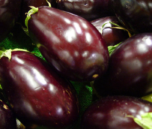 Eggplant Black Beauty Organic Solanum Melongena Seeds