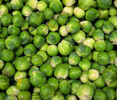 Brussels Sprouts Long Island Brassica Oleracea Seeds