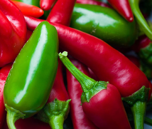 Pepper Hot Early Jalapeno Organic Capsicum Annuum Seeds