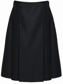 Drop Waist Pleated Skirt (Innovation)