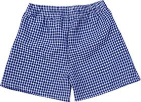 Gingham Under Shorts Navy blue