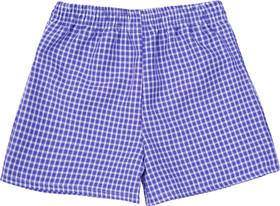Gingham Under Shorts Purple