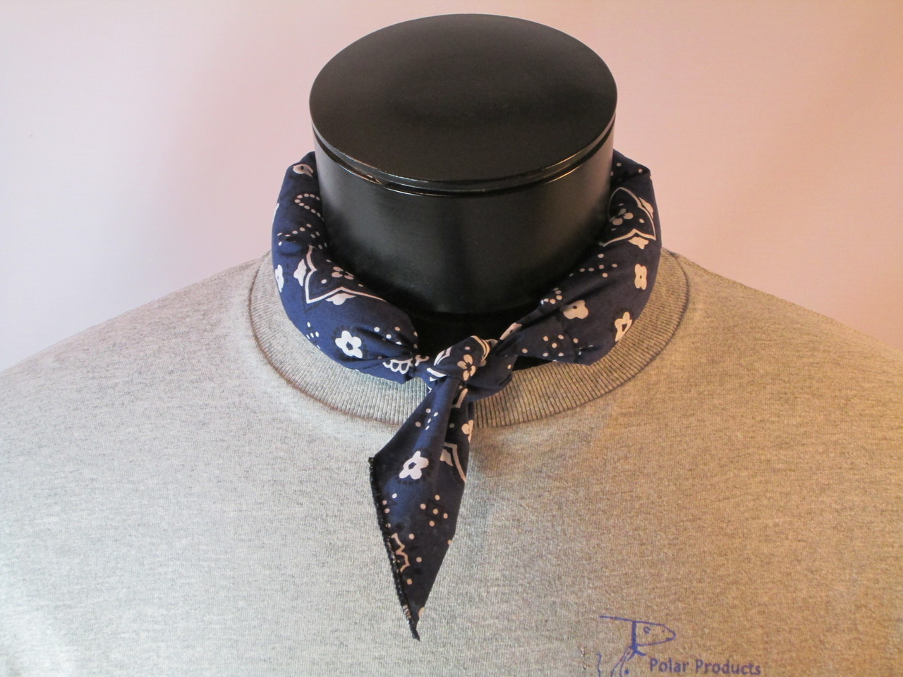 Polar Cooling Tie in blue bandanna print.