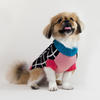 Dog Sweater, Grid ColorBlock