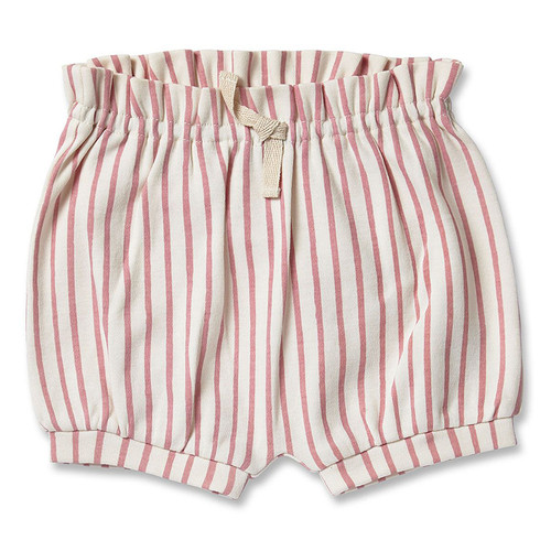 Bloomer, Dark Pink Stripes