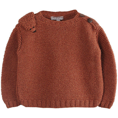 Knit Pullover, Ecureuil