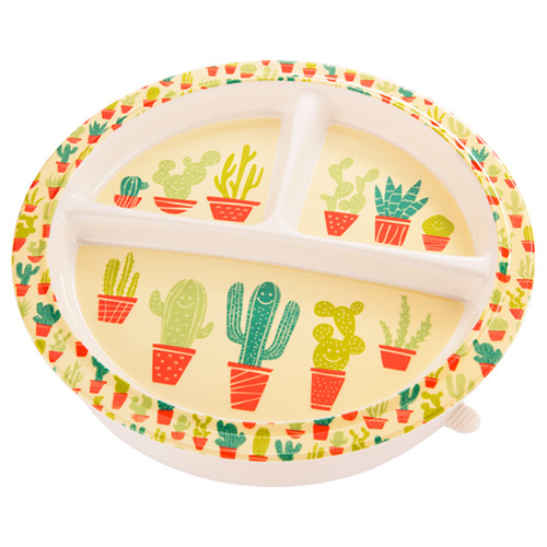 Divided Suction Plate, Happy Cactus