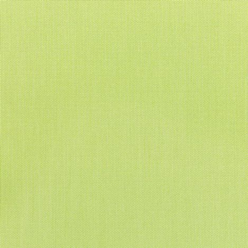 Canvas Parrot 5405