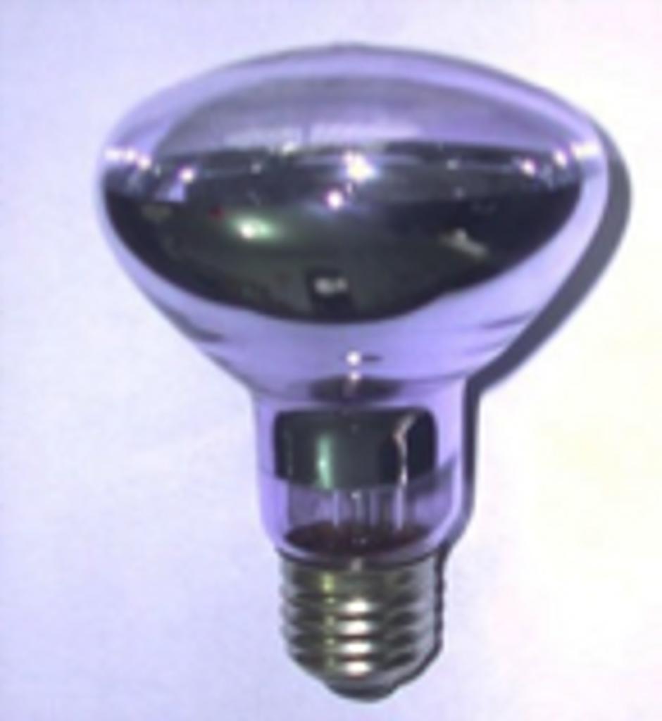 Basking Bulb 75watt