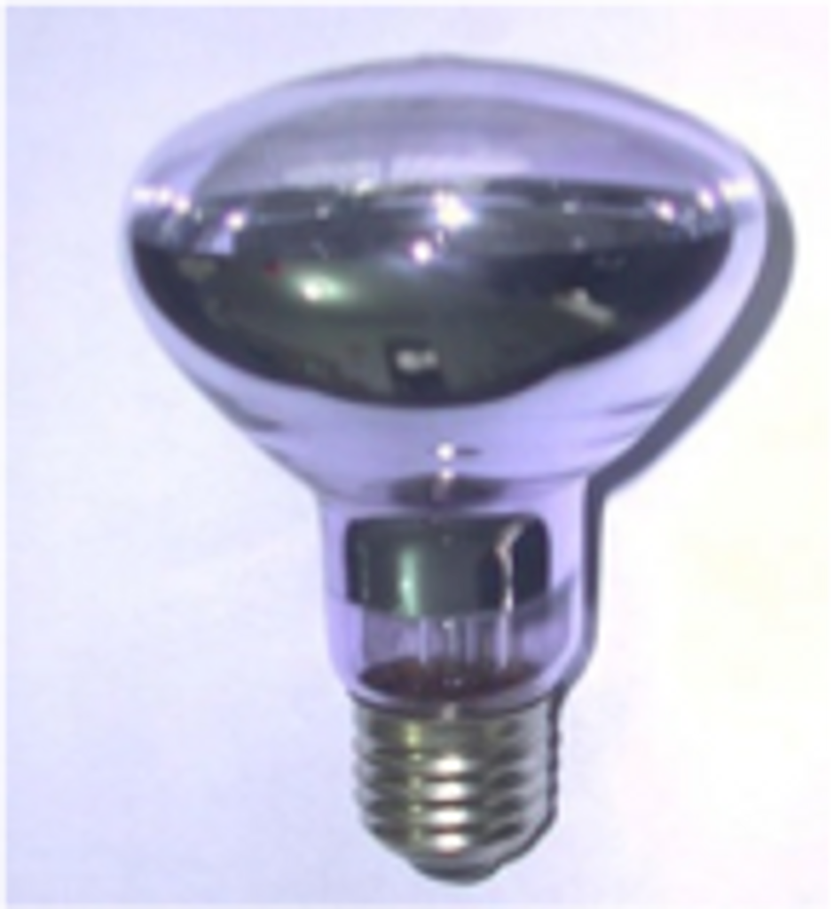 Basking Bulb 40watt