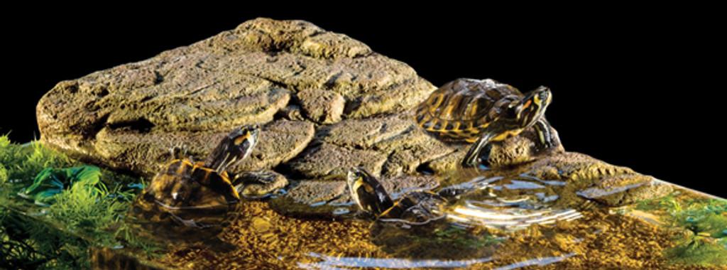 Eco terra floating turtle bank turtle island
