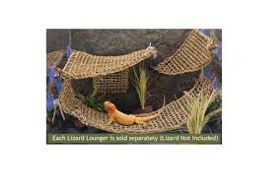 Lizard Lounger Vine