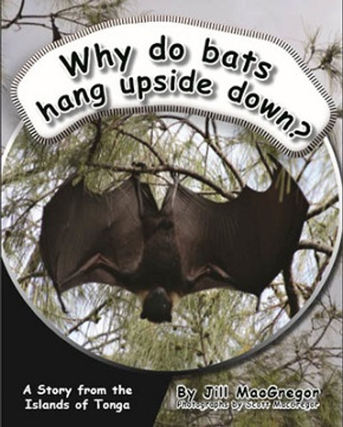 Why Do Bats Hang Upside Down? A Story from the Islands of Tonga