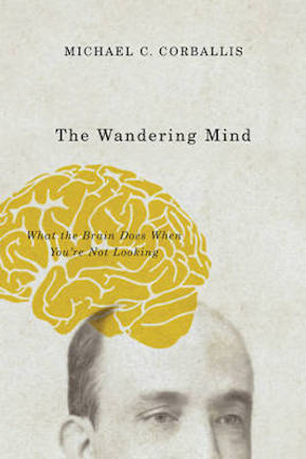 The Wandering Mind: What the Brain Does When You're Not Looking
