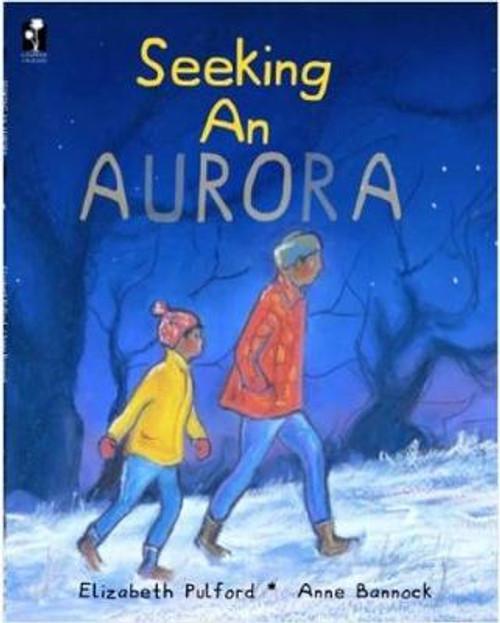 Seeking An Aurora
