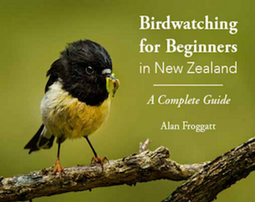 Birdwatching in New Zealand