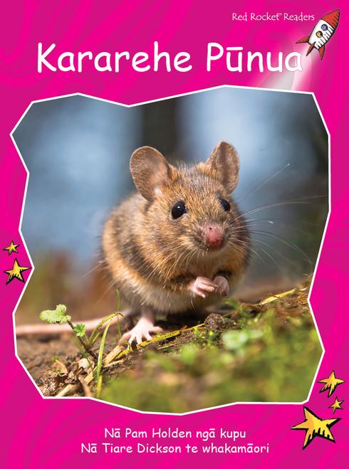 Little Animals te reo Maori - Kararehe Iti