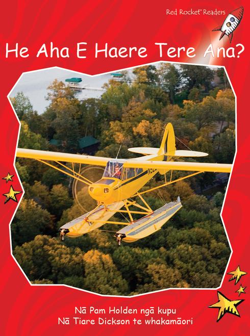 What Goes Fast? te reo Maori - He Aha E Haere Tere Ana?