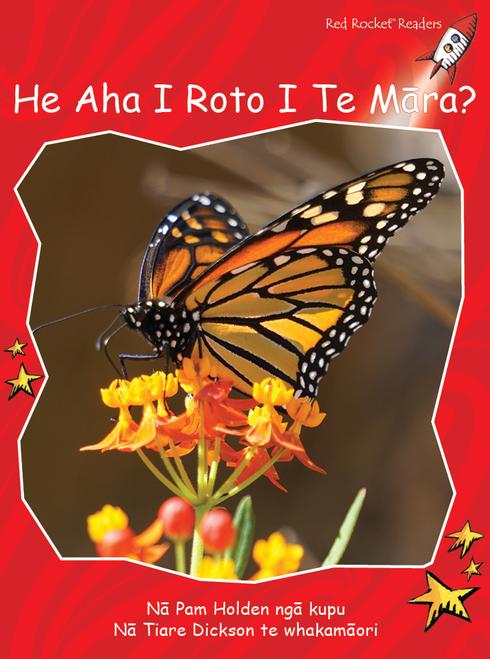What's in the Garden? te reo Maori - He Aha Kei Roto I Te Maara?