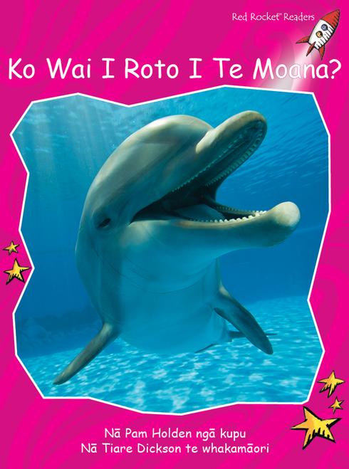 Who Lives in the Sea? te reo Maori - Ko Wai i Roto i Te Moana?