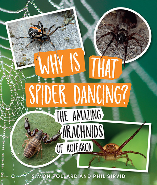 Why Is That Spider Dancing?: The Amazing Arachnids of Aotearoa