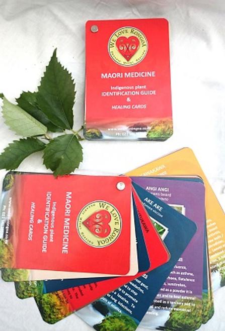 Maori Medicine Indigenous Plant Identification