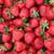 Strawberry Chunk Bar