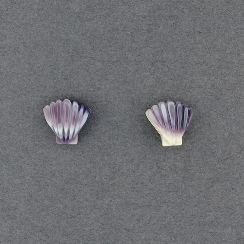 Wampum Scallop Post Earring