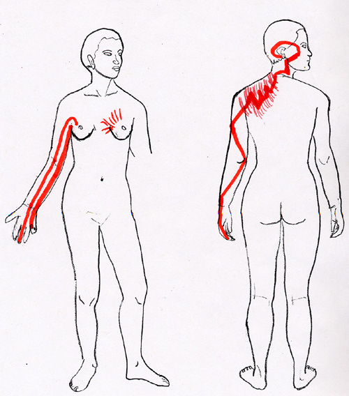 HT SI SJ PER Acupressure Channels