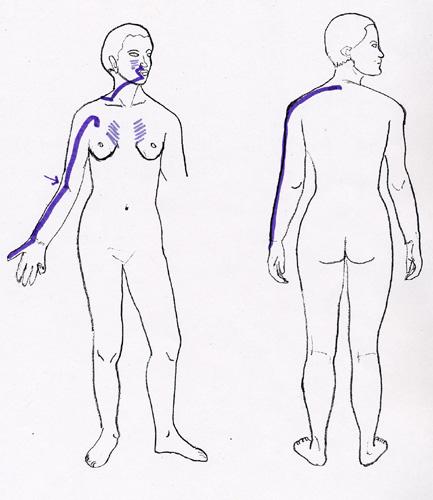 acupressure image