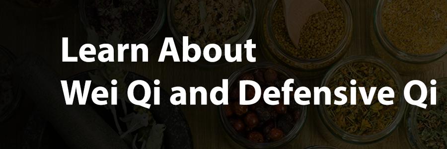 Wei Qi Defensive Qi and immune health