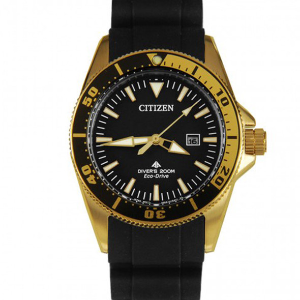 Citizen watch EP6044-01E
