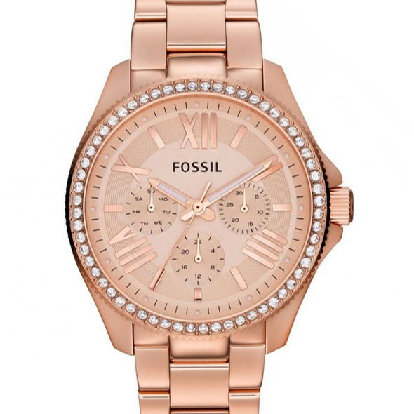 AM4483 Fossil