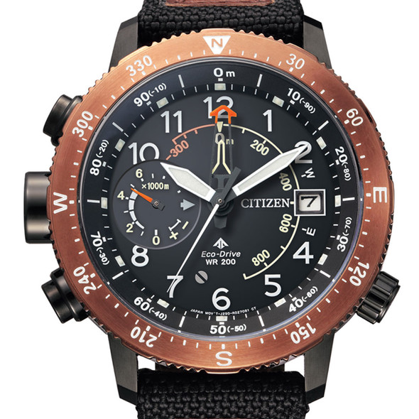Citizen Divers Watch BN4049-11E