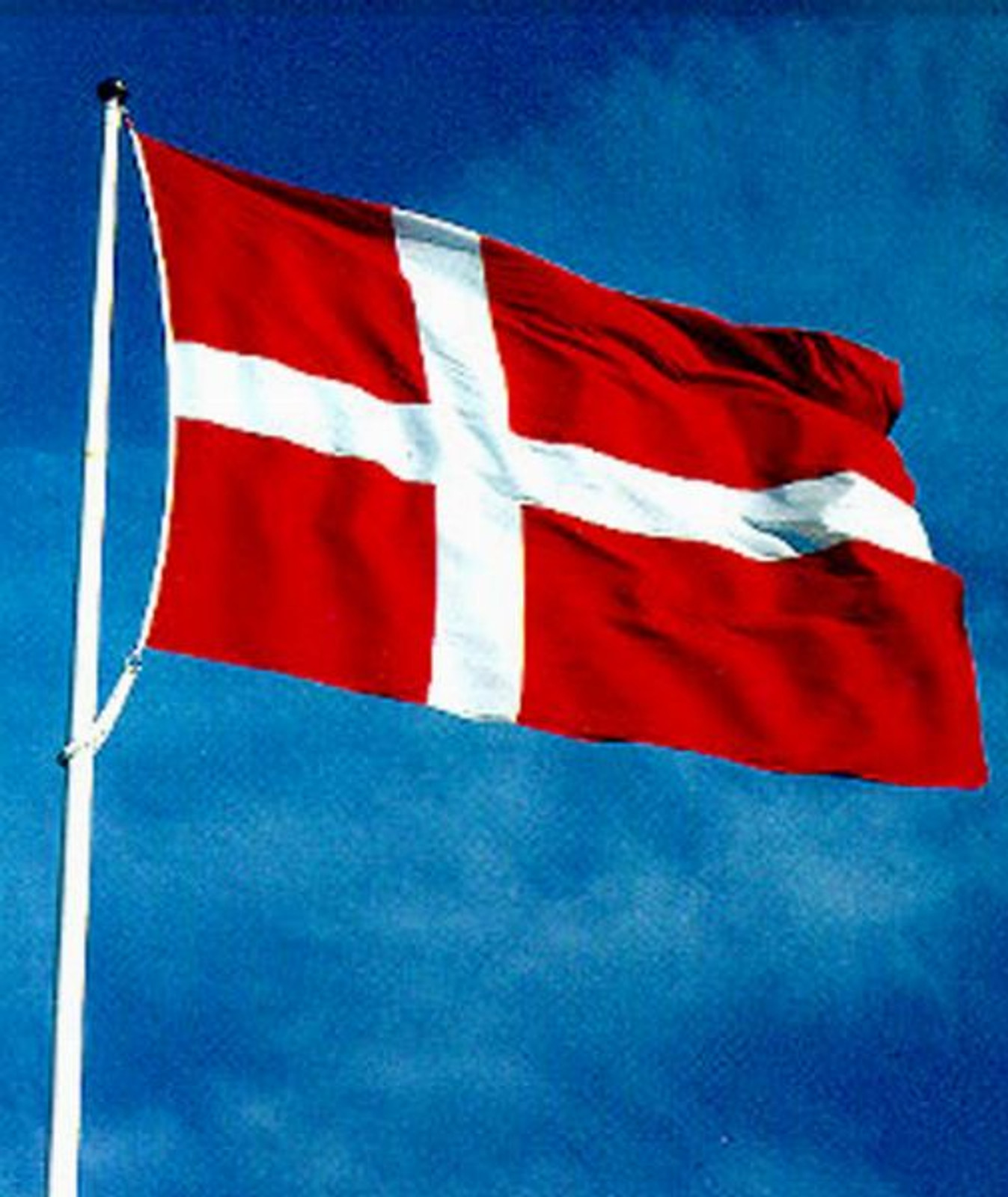 Denmark Flag, 2x3