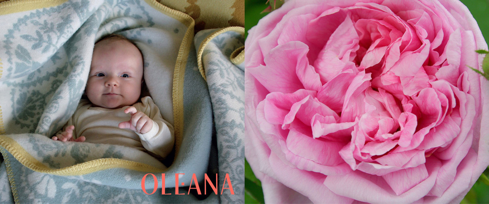 Oleana Blankets and Throws