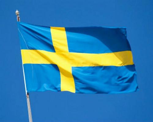 Swedish Flag, 2' x 3'