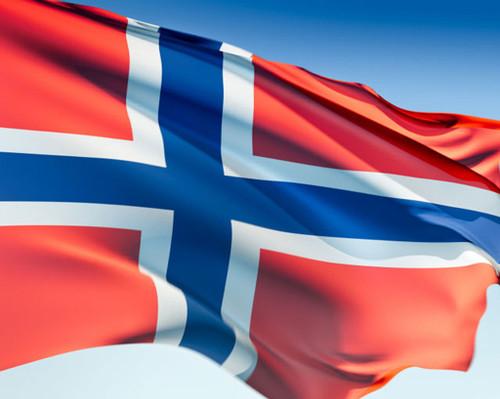 Norwegian Flag, 3x5