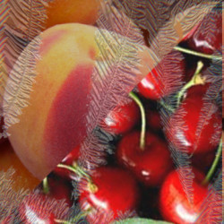Cherry Peach Chill